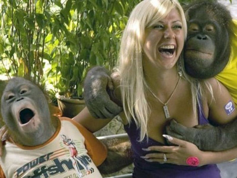 fun with apes