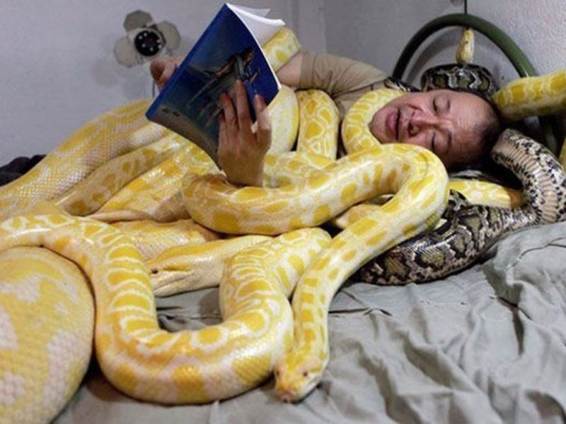 reading with snakes