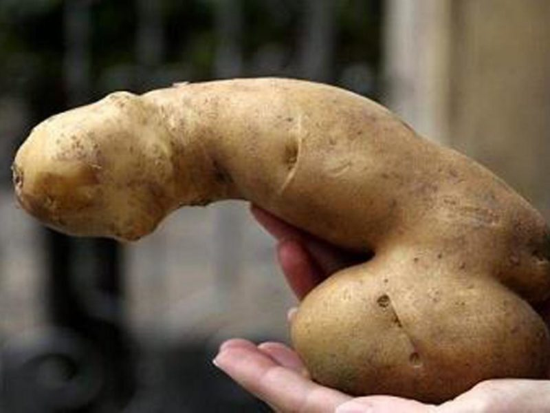 hot patato